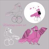 Комплект иллюстрации свадьбы целуя голубей с tex Стоковое Изображение