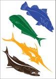Комплект 4 иллюстраций рыб Стоковые Фотографии RF