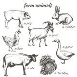 Комплект иллюстраций эскиза вектора животноводческих ферм Стоковые Фото