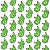 Комплект кактуса акварели Стоковая Фотография