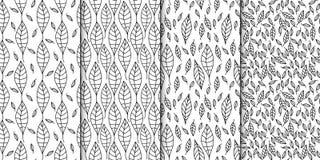 Комплект картины вектора безшовный Линейный графический дизайн Декоративные законспектированные листья Стоковые Фото