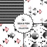 Комплект картины моря и рыб Стоковая Фотография