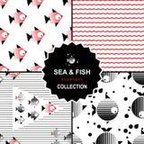 Комплект картины моря и рыб Стоковое Изображение
