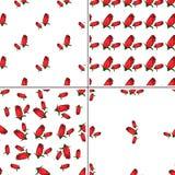 Комплект картины 4 цветов геометрической безшовной с цветками поднял иллюстрация штока
