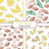 Комплект картин нарисованных рукой безшовных с лимоном, фисташкой, шоколадом и мятой Сладостные предпосылки отбензиниваний иллюстрация вектора