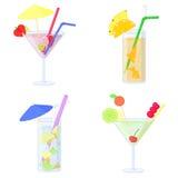 Комплект коктеилей с плодоовощ и льдом Стоковое Фото