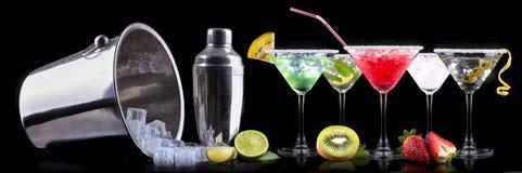 Комплект коктеиля спирта с плодоовощами лета Стоковая Фотография RF