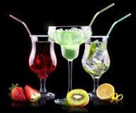 Комплект коктеиля спирта с плодоовощами лета Стоковое Фото