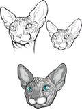 Комплект кота sphynx также вектор иллюстрации притяжки corel Тип татуировки Стоковая Фотография RF