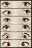 Где вы смотрите? Стоковое Изображение RF