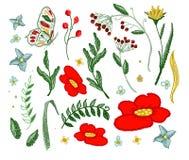 Комплект красивого вектора вышивки цветков для элементов дизайна ткани Стоковое Фото