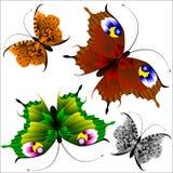 Комплект красивых пестротканых бабочек Стоковое фото RF