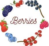 Комплект красивых плоских ягод вектора Стоковое Изображение RF
