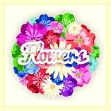 Комплект красивых ярких цветов с надписью Яркие бутоны, листья, цветки Цветки для поздравительных открыток, плакатов, рогулек Стоковые Изображения RF