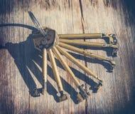Комплект ключей для всех замков для замков Стоковые Фотографии RF