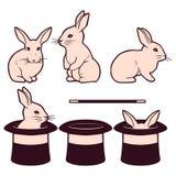 Комплект милых белых кроликов и цилиндров иллюстрация штока
