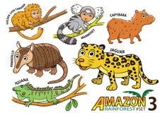 Комплект милых животных и птиц шаржа в областях Амазонки Sou иллюстрация вектора