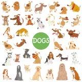 Комплект милых характеров собаки большой иллюстрация штока
