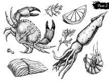 Комплект морепродуктов вектора нарисованный рукой сбор винограда милой иллюстрации птиц установленный