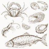 Комплект морепродуктов бесплатная иллюстрация