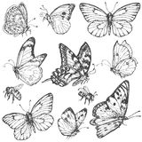 Комплект нарисованный рукой бабочек и пчел