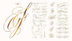 Комплект нарисованный рукой каллиграфический Стоковые Изображения