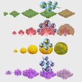 Комплект овощей и коралла моря, 4 составов бесплатная иллюстрация
