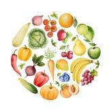 Комплект овощей и плодоовощей акварели Стоковое Фото