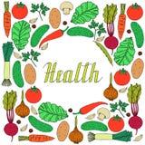 Комплект овощей нарисованных рукой на белой предпосылке Бесплатная Иллюстрация