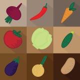 Комплект 9 овощей на коричневой предпосылке иллюстрация вектора