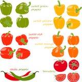 Комплект овощей с титрами, иллюстрация, Стоковые Изображения