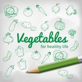 Комплект овощей doodle с зеленым карандашем Стоковые Изображения RF