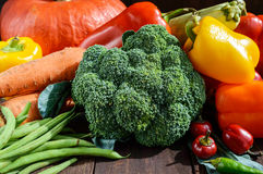 Комплект овощей & x28; брокколи, моркови, зеленые фасоли, сквош, сладостный перец, chili, zucchini& x29; Стоковое фото RF