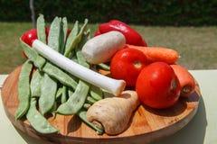Комплект овощей & x28; томаты, лук-пореи, сельдерей, vegetables& x29 корня; fo Стоковое Фото