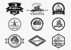 Комплект логотипа специи в винтажном стиле Нарисованная рука вектора Стоковая Фотография