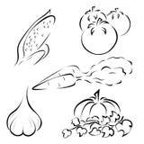 Комплект логотипов овощей Стоковые Изображения RF