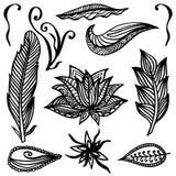 Комплект орнаментальных элементов стиля Boho предпосылка рисуя флористический вектор травы Стоковое фото RF