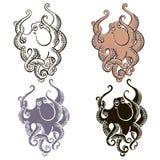 Комплект осьминога на белой предпосылке Vecto нарисованное рукой Стоковое Изображение RF