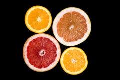 Комплект отрезанных цитрусовых фруктов апельсина, грейпфрута Стоковые Фотографии RF