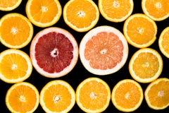 Комплект отрезанных цитрусовых фруктов апельсина, грейпфрута Стоковая Фотография