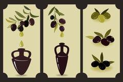 Комплект оливкового масла Ярлыки с оливковыми ветками и амфоры с маслом Элементы дизайна ярлыка оливкового масла Стоковое фото RF