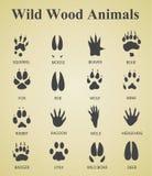 Комплект одичалых деревянных животных следов Стоковые Изображения