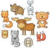 Комплект одичалых животных леса Стоковое Изображение