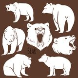 Комплект одичалых силуэтов медведя на предпосылке Стоковые Фото