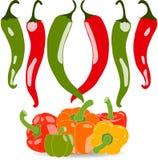 Комплект перцев помадки и chili, иллюстрации Стоковые Изображения