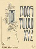 Английский алфавит Стоковые Фотографии RF