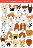 Комплект 24 покрасил породы собак различные handmade Головная собака иллюстрация вектора
