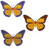 Комплект покрашенных бабочек мозаики дальше с предпосылкой изолировано иллюстрация вектора