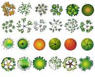 Комплект покрашенных символов treetop иллюстрация вектора