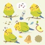 Комплект попугая budgie шаржа вектора Стоковое Изображение